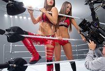 The Bella Twins / WWE women wrestlers  The Bella Twins.