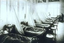 The Spanish Flu Pandemic