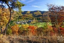 Countryside Seasons