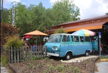 Around Gainesville / Gainesville, aka G-Vegas, is the hotspot for all things awesome. Check out these fun things to do and see in and around The Swamp. / by Swamp Rentals