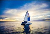 I love catamarans