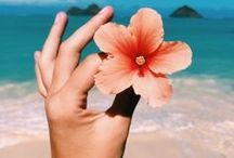 TRAVEL VIBES: HAWAII / Hawaii Travel & Photography   hawaii travel | things to do in hawaii