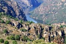 Naturaleza en Zamora