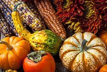 Autumn and Thanksgiving / by Brenda Keeley
