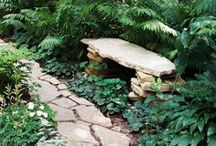Inspirations for a Shady Garden