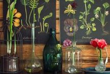 Bohemian Botanical / Rustic, wild and green decor, love for plants and gardening
