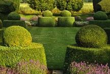 Formal Gardens and Topiaries