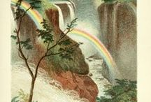Rainbows in the Library / A selection of illustrations in the digital collections of Biodiversity Heritage Library that have or resemble rainbows. Several of these were posted to BHLib's Instagram from #RainbowsintheLibrary which was the challenge in November 2016.