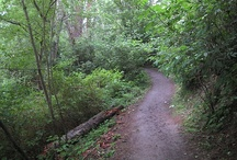 Hiking in Plumas County / by Plumas County Tourism Council