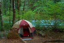 Camping in Plumas County / by Plumas County Tourism