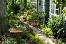 garden / garden image