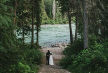 Wedding Ideas / by Sara