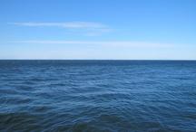 Pleasant Bay / Photos from Pleasant Bay, Nova Scotia