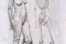 kreslenie postavy / figure drawing / tutorials