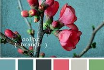 farebné palety / color palettes / inspiration