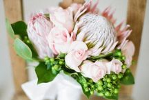 Shaneen's FLOWERS! / Flower arrangements, bouquets, tablescapes for Wedding!  Proteas are my Fave:)