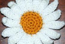 FLOWERS Daisy - Marquerite - Geberda