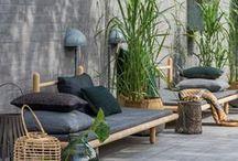 Outdoors / Cool gardening