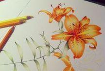 Illustrations, Paintings, Collages / Ilustrações, pinturas, colagens