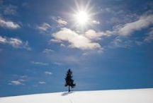 THE SUN : Kent Shiraishi Photography  / https://www.facebook.com/KentShiraishi?fref=ts