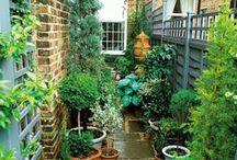 Outdoor spaces / Garden design & spaces