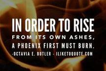 The Phoenix (Book 3)
