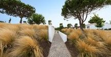 Villa Salema / This orthogonal garden has white walls and the shrubs and pathways compartment the space, thus defining it. The garden is on terraces and the lawns near the house are intersected by shrubs that break the monotony of the green and the horizontal nature.