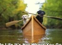 I'd Rather be Canoeing!