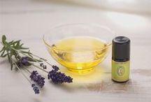 Lavendel - Lavender
