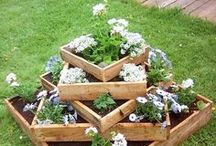 Gardens Flowers & Plants / Gardens, plants and beautiful flowers! And don't forget we need bees as well! Includes DIY such as ideas for chicken coops (if you like cage free eggs).