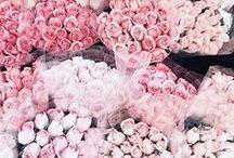 Floral~