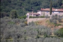 Luxury Villa Valliana - 22 pax - Florence, Tuscany