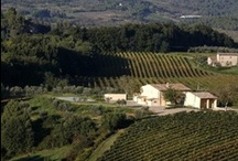 Luxury Villa Chianti - 27 pax - Mercatale, Florence, Tuscany