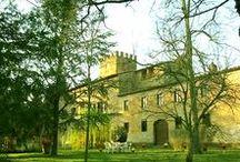 Villa Claudia - 12 pax - Bucine, Siena