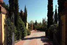 Farmhouse Leo - 6 pax - Montaione, Florence