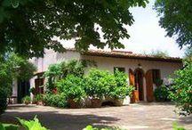 Villa Olea - 8 pax - Calenzano, Florence