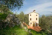 Villa Amarosa - 12 pax - Massa Pisana, Lucca
