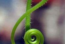 I  ♥  music!