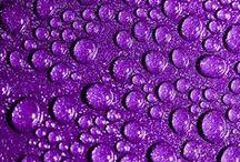 Colours - Purple & Violet