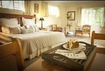 Bed & Breakfast / Images of each of the guesthouse rooms available.