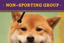 Non-Sporting Group