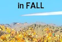 California in Fall / California in September, October, November: Travel-worthy events you'll love, what you need to know about weather. From California Travel Expert Betsy Malloy at gocalifornia.about.com