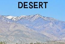 California Desert / Fun things to do for a trip to Palm Springs and the desert. From California Travel Expert Betsy Malloy at gocalifornia.about.com