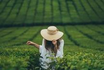 Green peaceful living