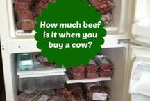 Buying a Cow - Quarter, Half or Whole