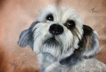 Pampered Portraits / Specialising in PET PORTRAITS....sketches and acrylic portraits of Australian Wildlife, dogs, cats, birds, pigs, horses....!!!!