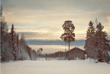 Suomi, kotini!