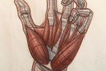 A_Shape_Hands