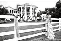 Engagement Portraits / by Nottoway Plantation