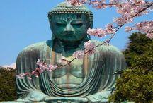 ● travel • JAPAN